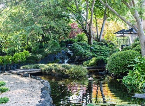 Nisbets Jobs - Japanese Gardens Image.jpeg