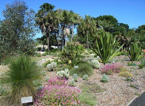 Nisbets Jobs - The Australian Botanic Garden Image.jpg